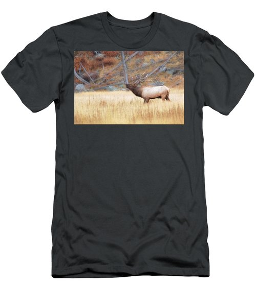 Bull Elk Men's T-Shirt (Athletic Fit)