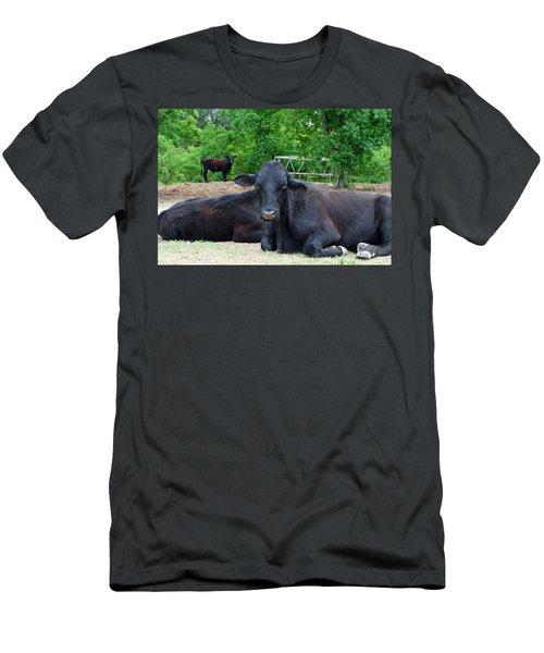 Bull Relaxing Men's T-Shirt (Athletic Fit)