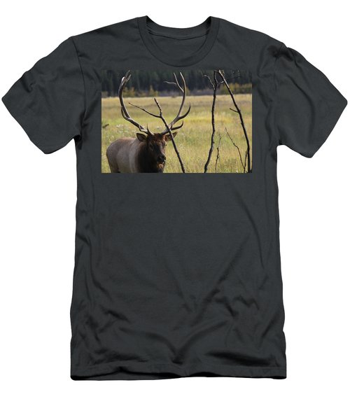 Bullelk2 Men's T-Shirt (Athletic Fit)