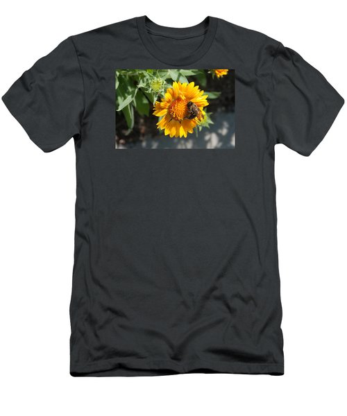 Bumble Bee Collecting Pollen On Sunflower Men's T-Shirt (Athletic Fit)