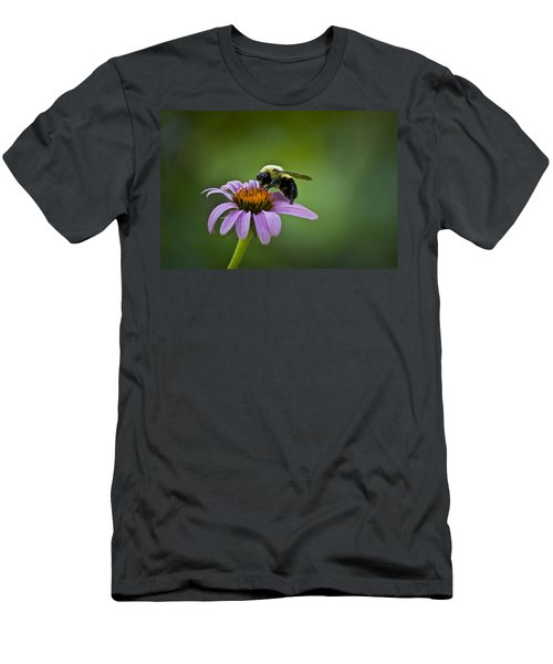 Bumblebee Men's T-Shirt (Athletic Fit)