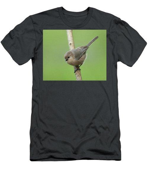 Bushtit Men's T-Shirt (Slim Fit) by Doug Herr