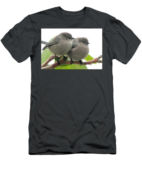 Bushtits Men's T-Shirt (Athletic Fit)