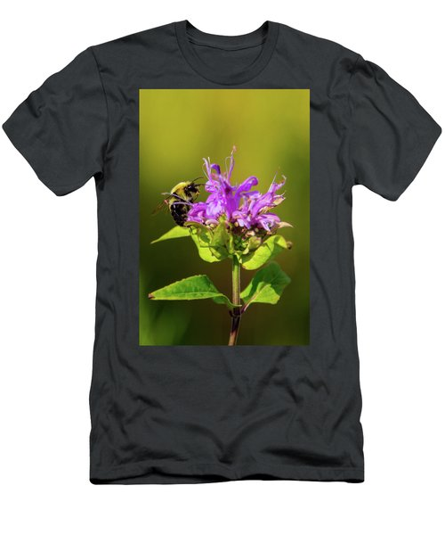 Busy As A Bee Men's T-Shirt (Athletic Fit)