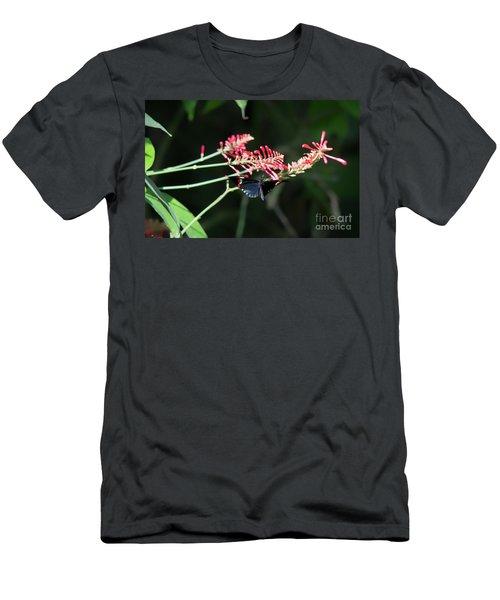 Butterfly In Flight Men's T-Shirt (Athletic Fit)