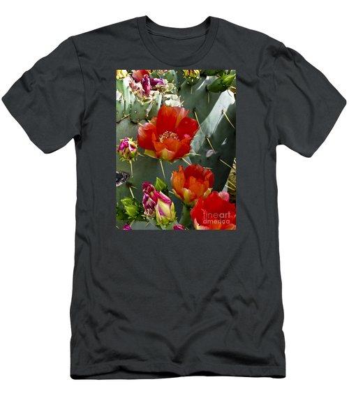 Cactus Blossom Men's T-Shirt (Slim Fit) by Kathy McClure