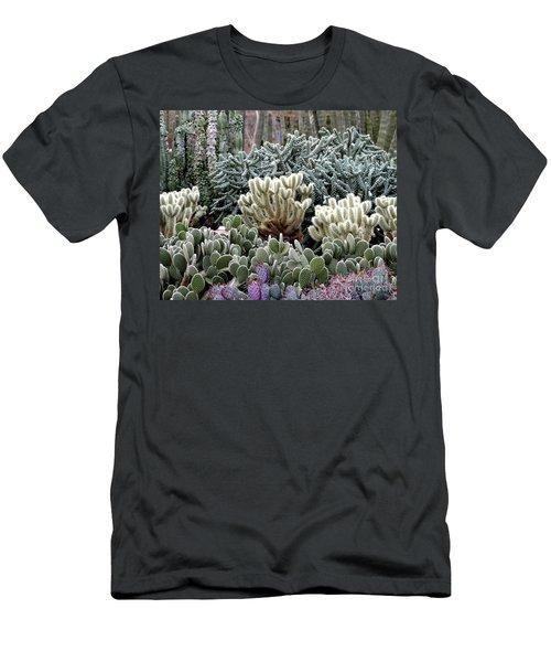 Cactus Field Men's T-Shirt (Slim Fit) by Rebecca Margraf