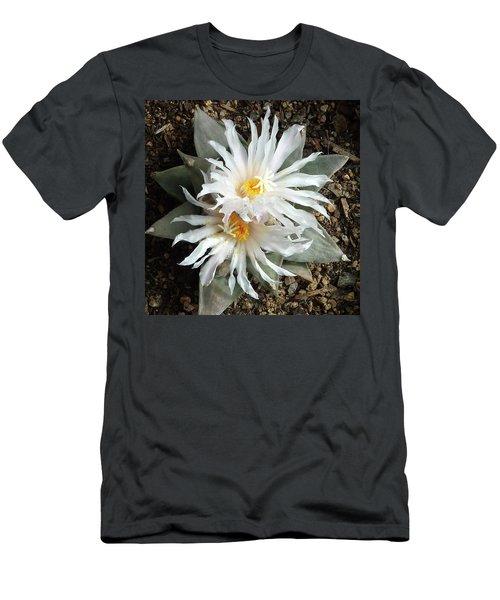 Cactus Flower 7 Men's T-Shirt (Athletic Fit)