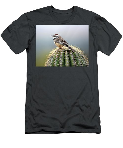 Cactus Wren On Saguaro Men's T-Shirt (Athletic Fit)