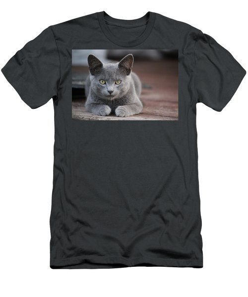 Men's T-Shirt (Slim Fit) featuring the photograph Caesar by Rowana Ray