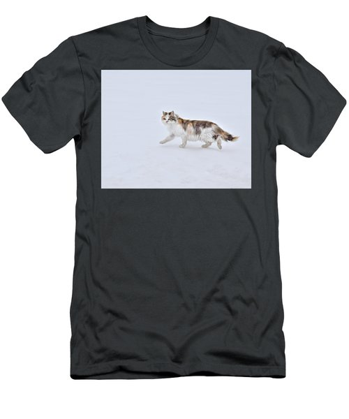 Calico Huntress Men's T-Shirt (Athletic Fit)