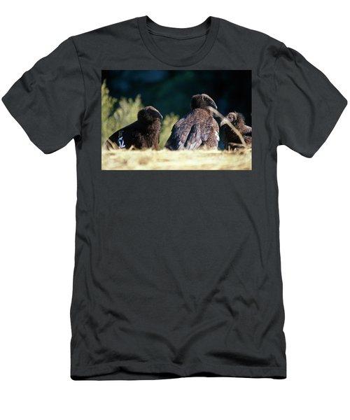 California Condors Men's T-Shirt (Athletic Fit)