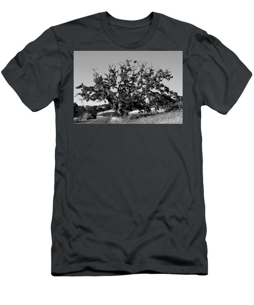 California Roadside Tree - Black And White Men's T-Shirt (Athletic Fit)