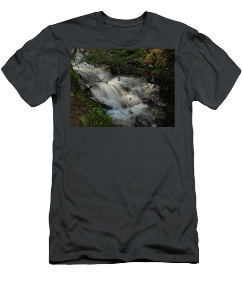Calming Stream Men's T-Shirt (Slim Fit) by DeeLon Merritt