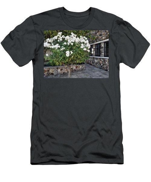 Camellia Blossoms Men's T-Shirt (Athletic Fit)