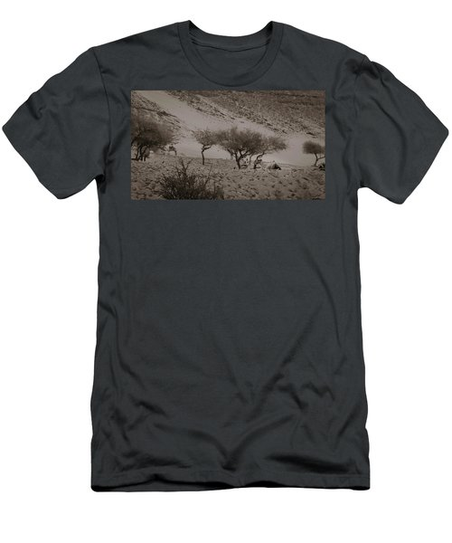 Camels Men's T-Shirt (Slim Fit) by Silvia Bruno