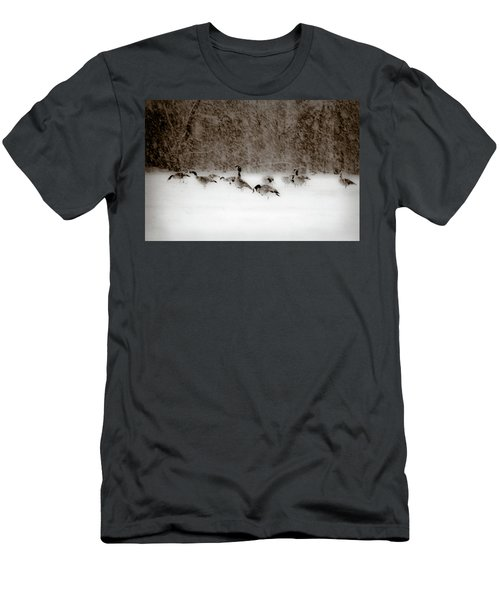 Canada Geese Feeding In Winter Men's T-Shirt (Athletic Fit)