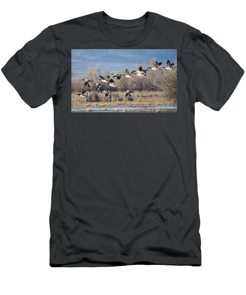 Canada  Geese Flock Men's T-Shirt (Athletic Fit)