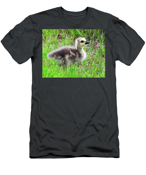 Canada Goose Gosling Men's T-Shirt (Athletic Fit)