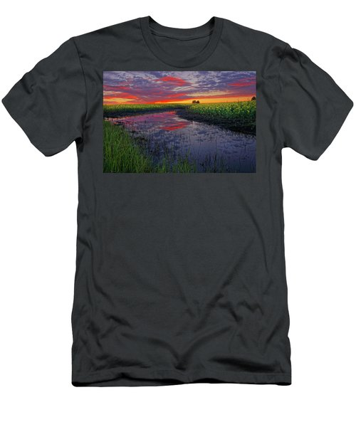 Canola At Dawn Men's T-Shirt (Athletic Fit)