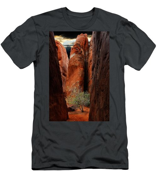 Canyon Tree Men's T-Shirt (Athletic Fit)