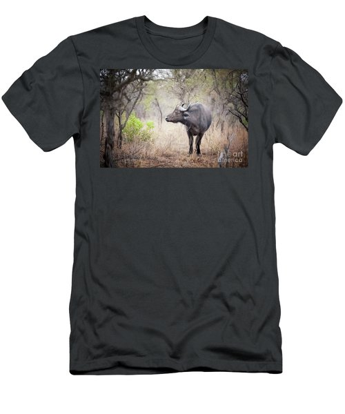 Cape Buffalo In A Clearing Men's T-Shirt (Athletic Fit)