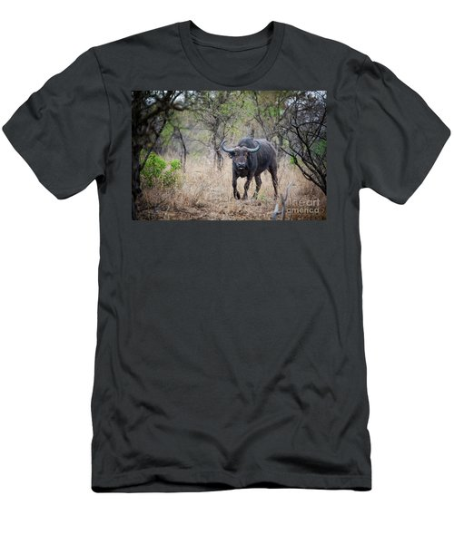 Cape Buffalo Men's T-Shirt (Athletic Fit)