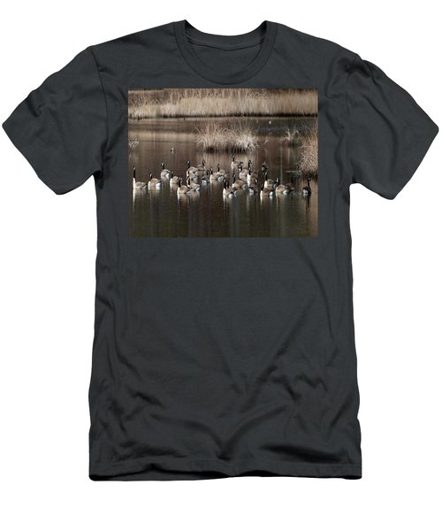 Cape Cod Americana Canada Geese Men's T-Shirt (Slim Fit) by Constantine Gregory