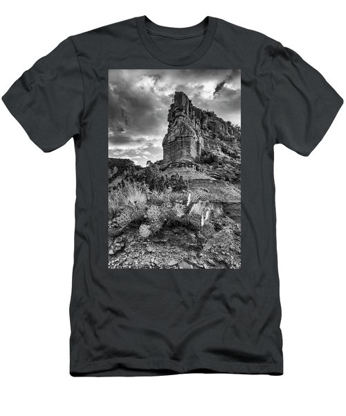 Men's T-Shirt (Slim Fit) featuring the photograph Caprock And Cactus by Stephen Stookey