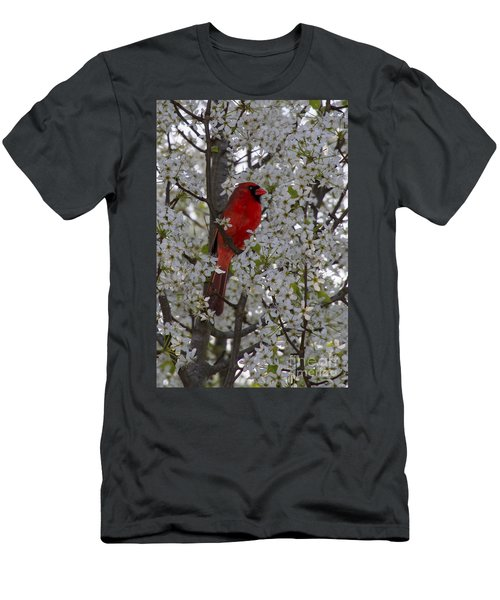 Cardinal In White Blossoms Men's T-Shirt (Slim Fit) by Barbara Bowen