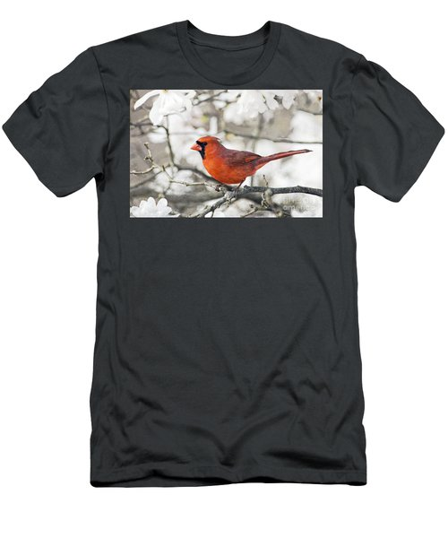 Men's T-Shirt (Slim Fit) featuring the photograph Cardinal Spring - D009909-a by Daniel Dempster