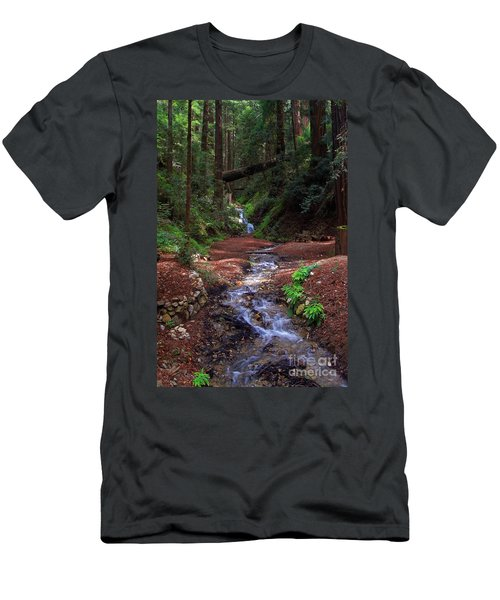 Castro Canyon In Big Sur Men's T-Shirt (Athletic Fit)