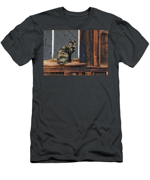Cat In A Window Men's T-Shirt (Slim Fit) by Scott Warner