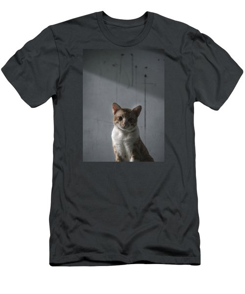 cat Men's T-Shirt (Athletic Fit)