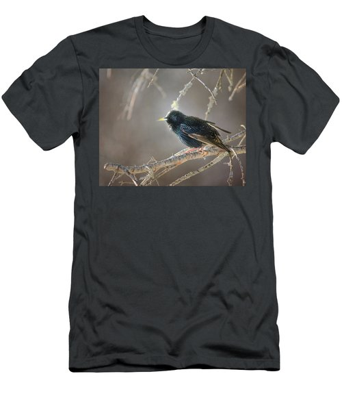 Catch The Morning Light Men's T-Shirt (Athletic Fit)