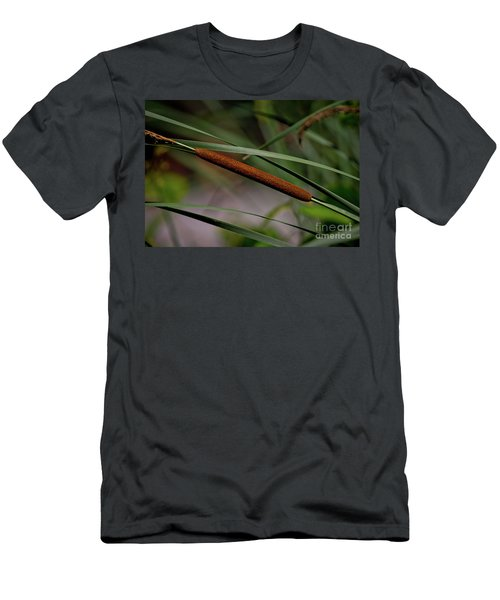 Cattail II Men's T-Shirt (Athletic Fit)