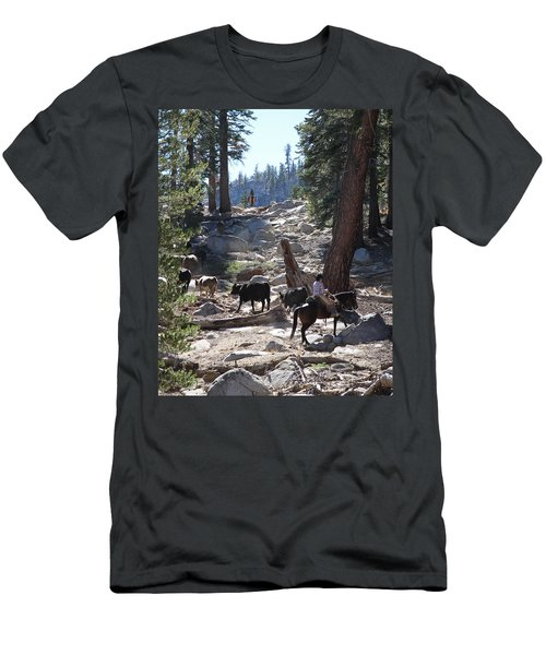Cattle Climbing Men's T-Shirt (Athletic Fit)