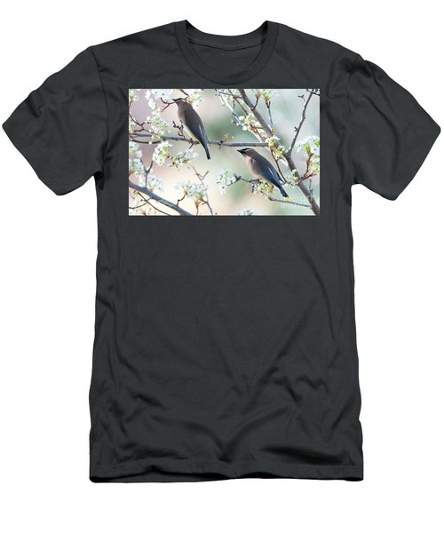 Cedar Wax Wing Pair Men's T-Shirt (Athletic Fit)