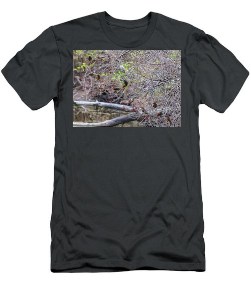 Men's T-Shirt (Slim Fit) featuring the photograph Cedar Waxwings Feeding by Edward Peterson