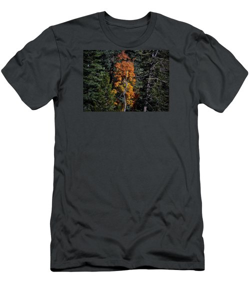Change Of Seasons Men's T-Shirt (Slim Fit) by Elaine Malott