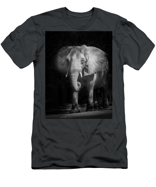 Charging Elephant Men's T-Shirt (Athletic Fit)