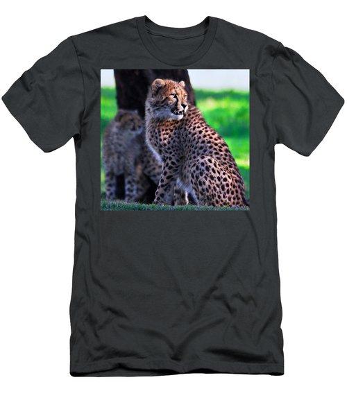 Cheetah Cub Men's T-Shirt (Athletic Fit)