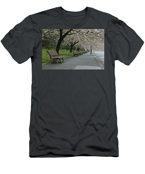 Cherry Blossoms And Benches Men's T-Shirt (Athletic Fit)