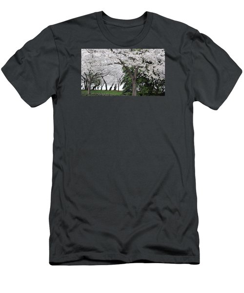 Cherry Blossoms Washington Dc Men's T-Shirt (Slim Fit) by Steve Archbold