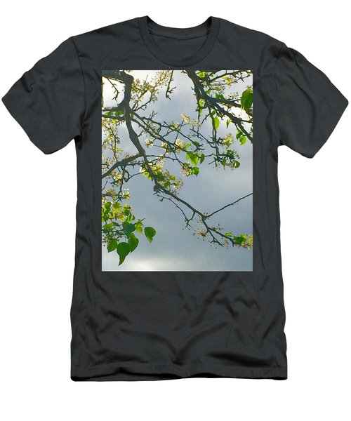 Cherry Tree Hack Men's T-Shirt (Athletic Fit)