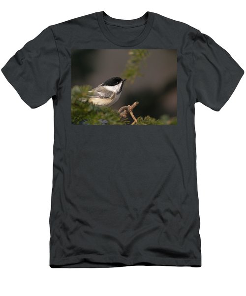Men's T-Shirt (Slim Fit) featuring the photograph Chickadee In The Shadows by Susan Capuano