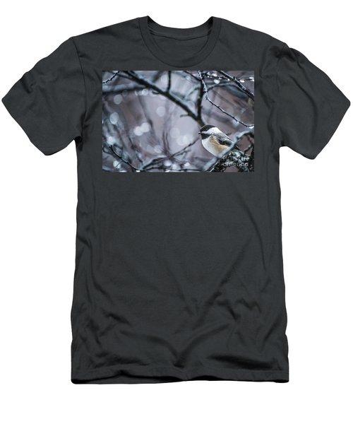 Chickadee Rain Men's T-Shirt (Athletic Fit)