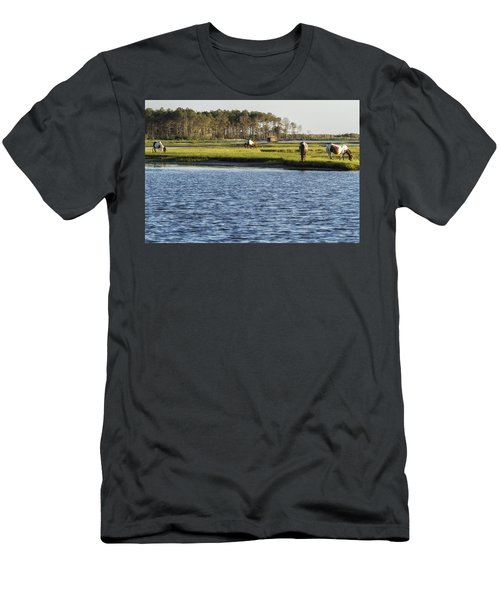 Chincoteague Ponies On Assateague Island Men's T-Shirt (Athletic Fit)