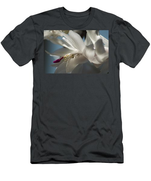 Christmas Cactus Blossom Men's T-Shirt (Athletic Fit)