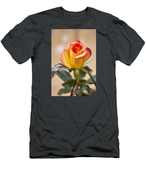 Men's T-Shirt (Slim Fit) featuring the photograph Christmas Rose by Joan Bertucci